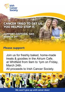 Whitfield bakes for Daffodil Day